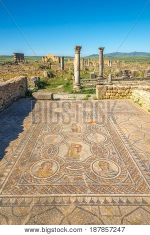Mosaic of the Four Seasons in the House of the Labours of Hercules in Volubilis - Morocco