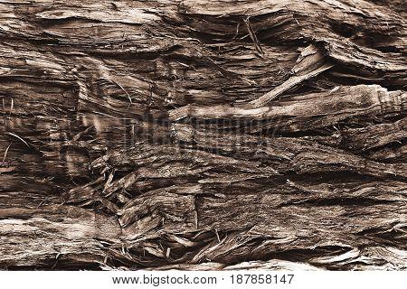 the old broken wood fiber close up