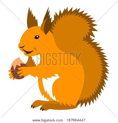 Cute smiling red squirrel holding nut. Vector cartoon illustration. Wild zoo animal icon. Fluffy ginger adult rodent standing with hazelnut. Isolated on white. Forest fauna childish character
