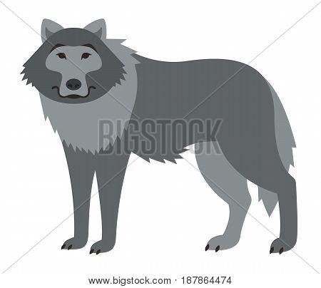 Cute smiling wolf vector cartoon illustration. Wild zoo animal icon. Big gray shaggy adult predator standing. Isolated on white. Forest fauna childish character. Simple flat design element. Side view