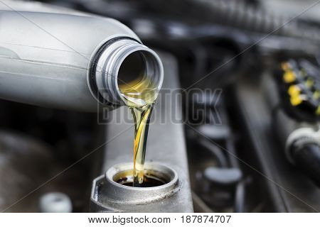 poured engine oil to car engine. Oil change in the car. motor oil