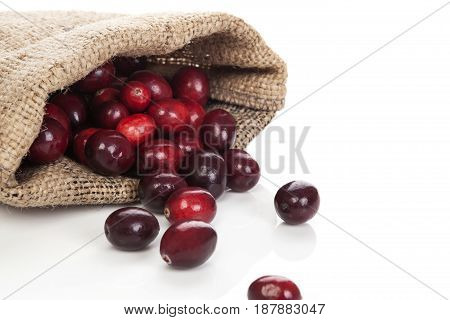 Ripe fresh delicious cranberries in burlap bag isolated on white background.