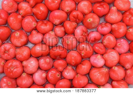 Red fruit rose apple floating in the water nature background The specialties of rose apple make a circle interesting. No matter it is in the form of natural fruit, juice or decorate in various containers on the dining table. Because of strange shape, eye-