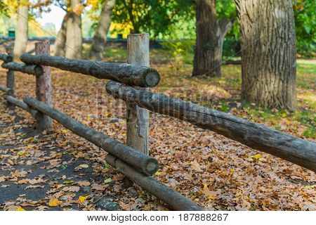 A fence of logs in the Park in autumn