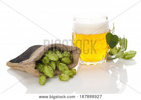 Glass of beer with hop fruit in burlap bag. isolated on white background
