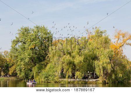 Pond in urban Park in autumn. Saratov, Russia