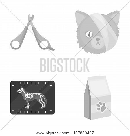 Scissors, cat, bandage, wounded .Vet Clinic set collection icons in monochrome style vector symbol stock illustration .