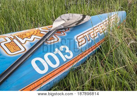 FORT COLLINS, CO, USA - MAY 23, 2017: A bow of racing stand up padleboard by Starboard with a paddle on a grassy lake shore