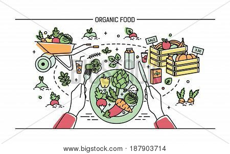 Horizontal banner with organic food. Composition with vegetables on plate, different fresh products, greenery, fruit, drinks. Colorful vector illustration in lineart style