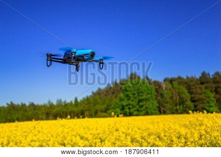 Drone flying over blossom rapeseed field