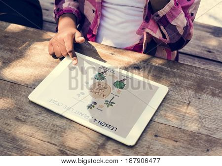 Plant life cycle on a tablet