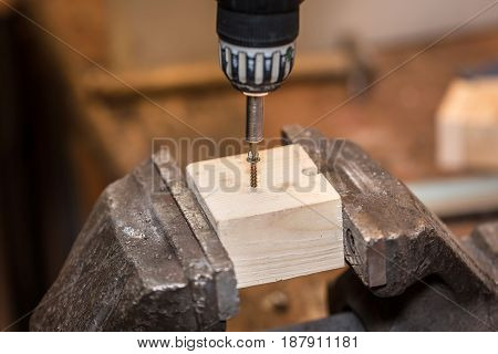 Worker Is Screwing A Screw Into Wooden Workpiece
