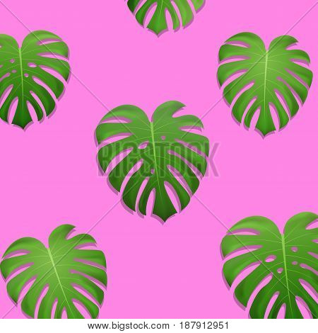 Palm leaves. Monstera leaves on millenial pink background. Exotic pattern.