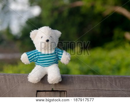White teddy bear wearing a blue shirt on the wood behind is a green tree and river.