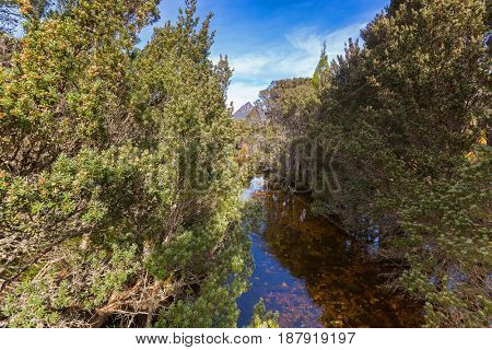 Small natural stream of water named Dove river, channel to Dove Lake at Cradle Mountain, Lake St Clair National Park. Autumn in Tasmania, Australia