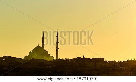 Silhouette of a Mosque Fatih in a fog and sunlight reflections. Vintage style