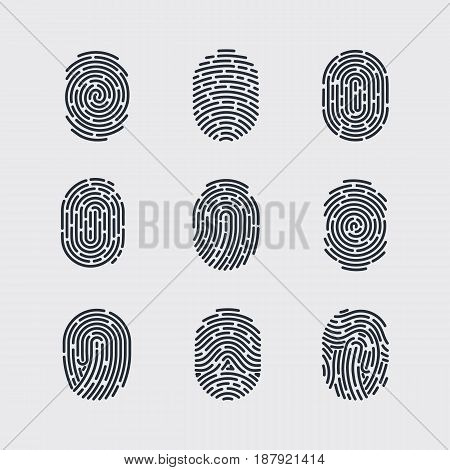 Types of Fingerprint Patterns for Identity Person Security ID on Gray for Design
