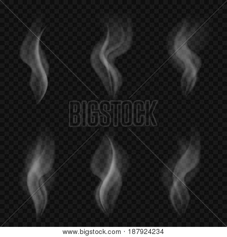 Abstract transparent smoke shapes isolated. Vector illustration