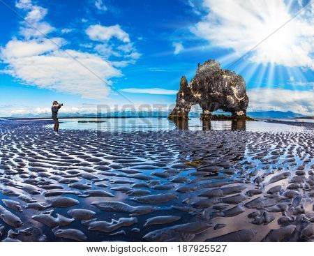 The elderly woman photographs the natural wonder. The Basalt rock - Monster Hvitsercur during an ocean outflow. Concept of extreme northern tourism in Iceland