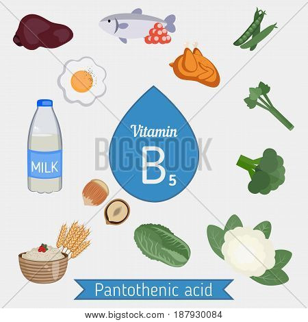 Vitamin B5 Or Pantothenic Acid Infographic