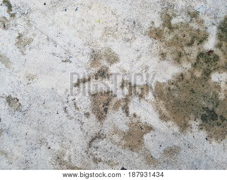 Semi-wet grunge and dirty cement floor background