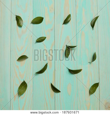 Background decorated leaves