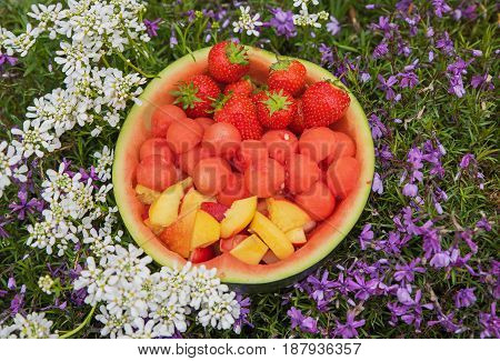 half of a watermelon filled with decorative fruit surrounded by phlox and iberis flowers. picnic in the garden