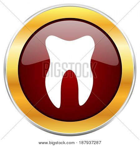 Tooth red web icon with golden border isolated on white background. Round glossy button.