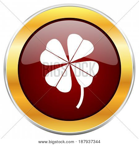 Four-leaf clover red web icon with golden border isolated on white background. Round glossy button.