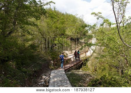 Active and healthy lifestyle on summer vacation and weekend tour. Group of tourists hitching a ride. Travel adventure and hiking activity