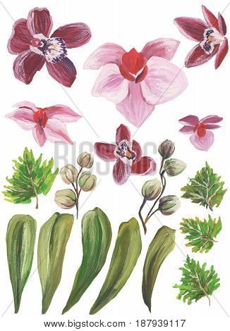 Watercolor painted collection. Excellent Design Watercolor Flowers and Leaves Elements for invitation.