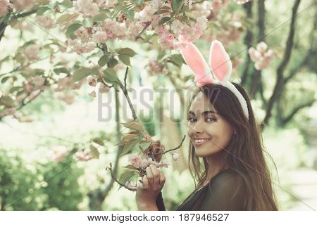 Woman Smiling At Tree With Blossoming Sakura Flowers