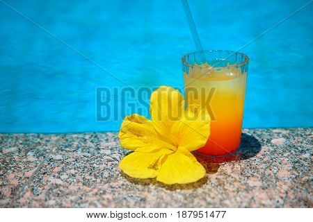 Cocktail With Yellow Flower Over Blue Surface Water Background. Exotic Vacation. Tropical Drink.