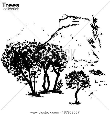 Vector Trees collection. Ink sketched Herault, France landscape with trees and Pic St Loup