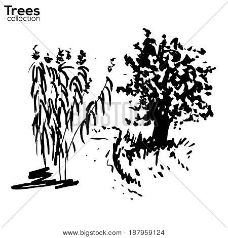 Vector Trees collection. Ink sketched landscape with trees