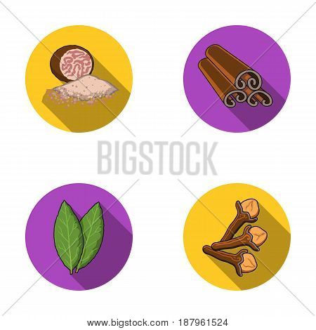 Nutmeg, cinnamon, bay leaves, cloves.Herbs and spices set collection icons in flat style vector symbol stock illustration .