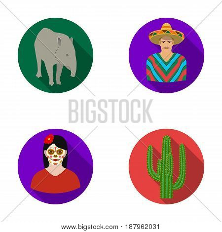 Tapir Mexican animal, a Mexican in national clothes in a poncho, a woman with a flower, a cactus. Mexico country set collection icons in flat style vector symbol stock illustration .