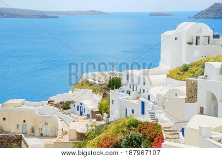 White town on the blossoming steep coast of the Greek island of Santorini on the background of blue sea and sky