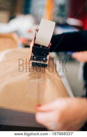 Woman Working In Printing Factory