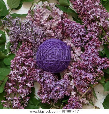 Lilac tangle of yarn among the flowers of lilac. Top view.