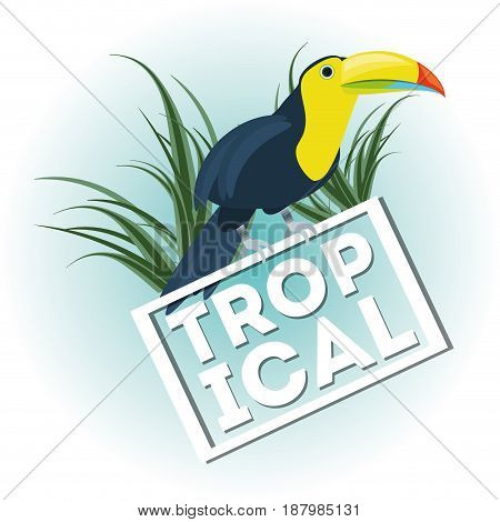 beautiful toucan over tropical palms, vector illustration