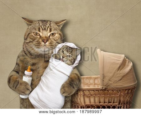 The cat is holding his baby and a bottle of milk. The pram is next to him.