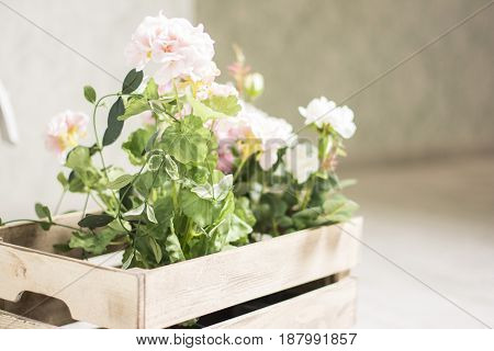 The artificial white flower in a basket on white background in front view