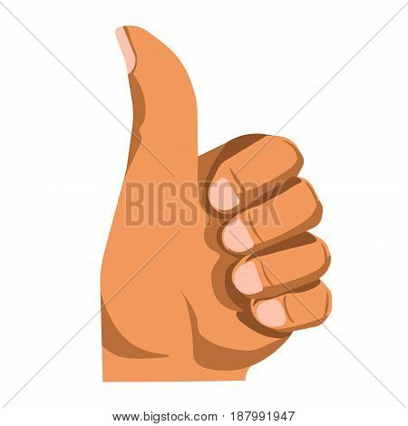Vector illustration of a hand showing a thumb up gesture isolated on white.
