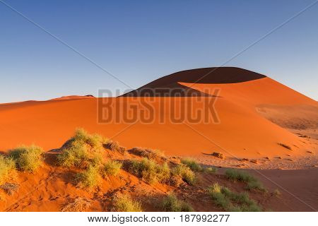 Big Daddy sand dune in the early morning light Sossusvlei Namibia Africa