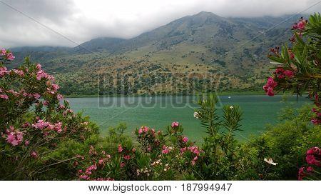 Beautiful views of lake Kournas, Crete (Greece) through the lush foliage of flowering shrubs in bright cloudy spring weather