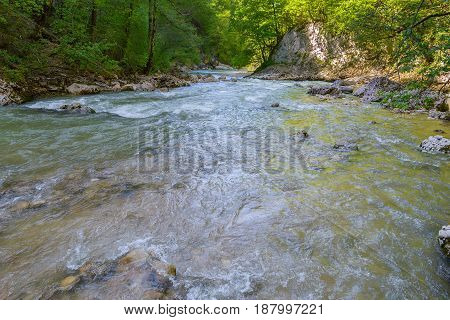 Mountain river flowing among the stone coasts