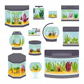 Transparent aquarium interior vector illustration isolated on white background underwater fish tank bowl habitat house. Tropical sea aquatic cartoon freshwater glass fishbowl collection. poster