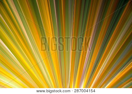 Colorful Light Of The Fabric That Is Stretched Is A Large Sun-shading Tent.