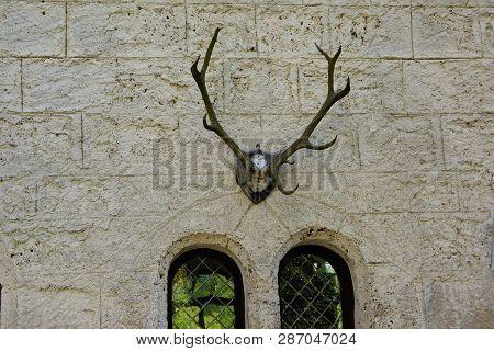 Deer Antlers Trophy On Castle Wall Ans Two Windows